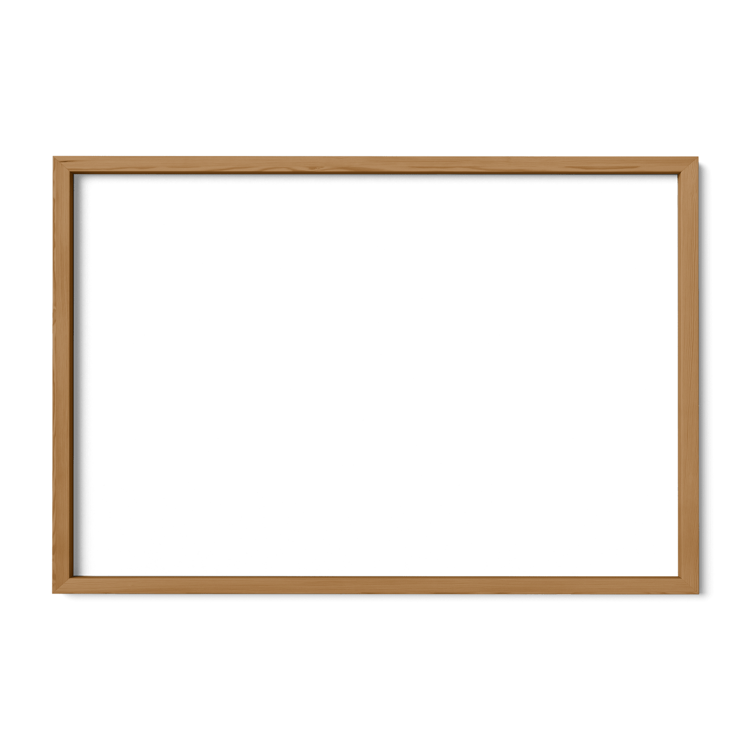 Freshwater Fish of America Frame