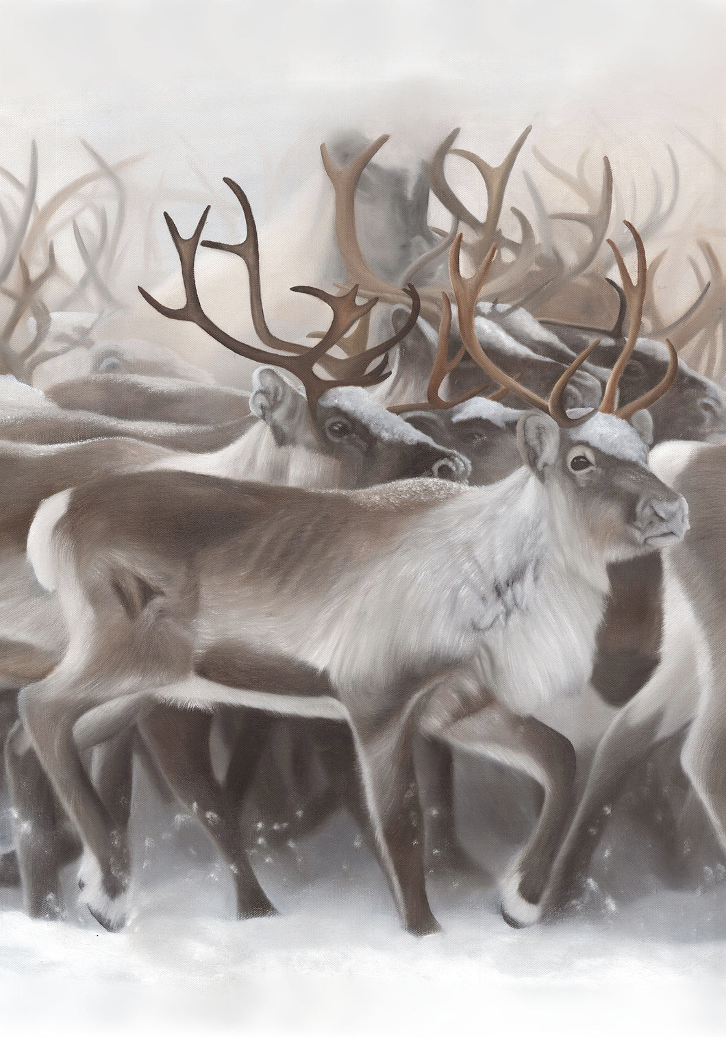 Reindeer Edition 1.2 (Kanvas)