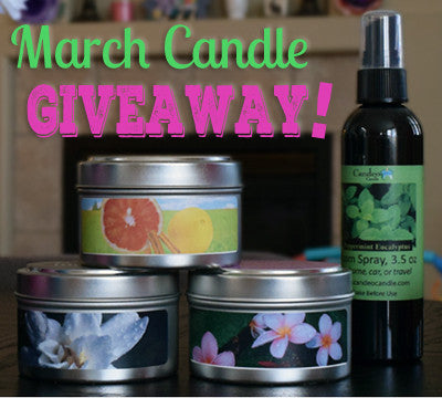 March 2016 Soy Candle Tin and Room Spray Giveaway!