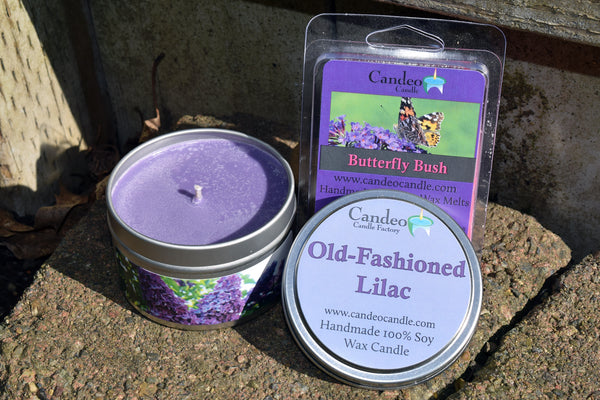 Old-Fashioned Lilac Soy Candle and Butterfly Bush Soy Melt Cubes