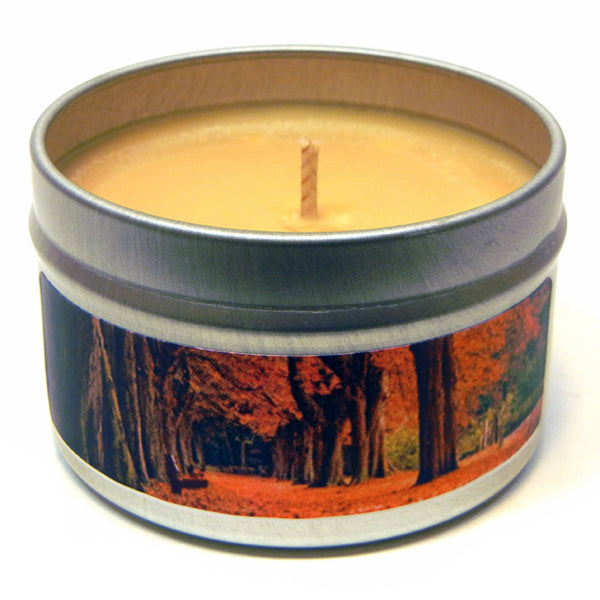 Crisp Autumn Air, 4oz Soy Candle Tin - Candeo Candle - 2