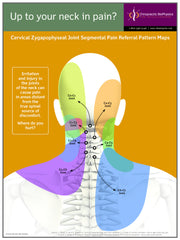 Neck Pain Sclerotome