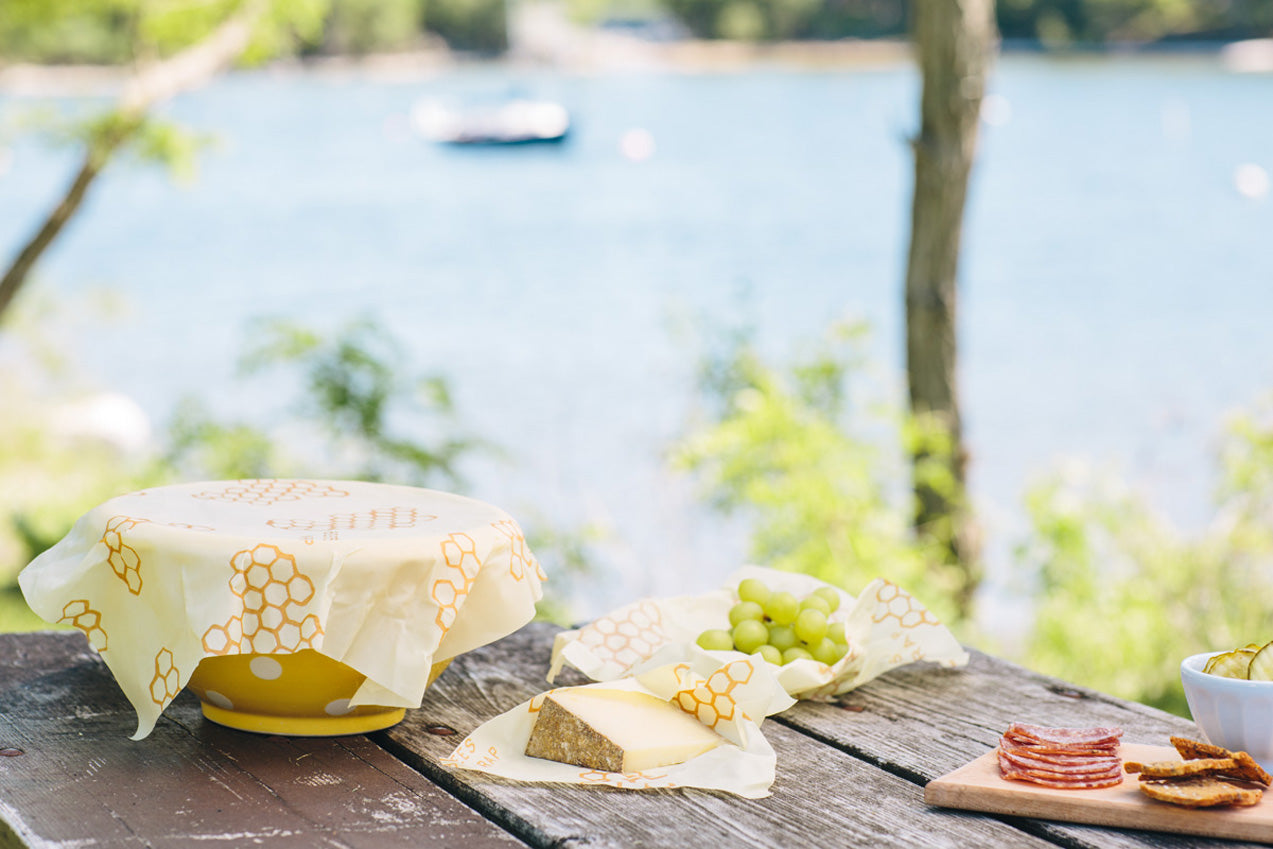 Bee's Wrap reusable food storage wraps on a picnic table against a Vermont lake in the springtime