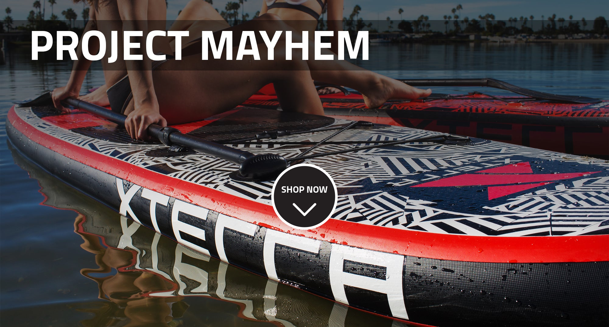 project_mayhem