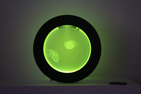 Cubic Orbit 20 Jellyfish Aquarium (tank only)