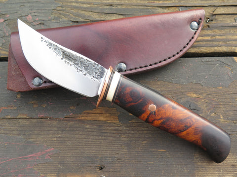 Desert Ironwood and Fossil Walrus Sharptail
