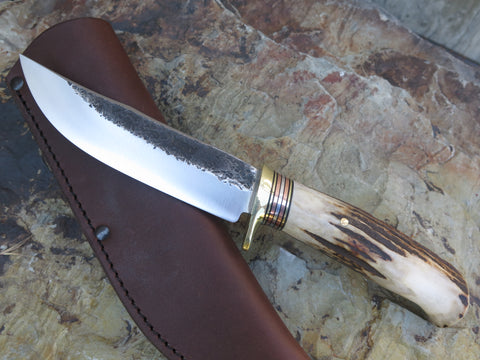 Premium Sambar Stag XL Hunter