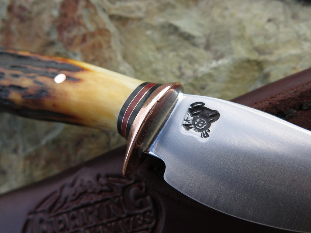 Premium Red Stag Mini Sharptail
