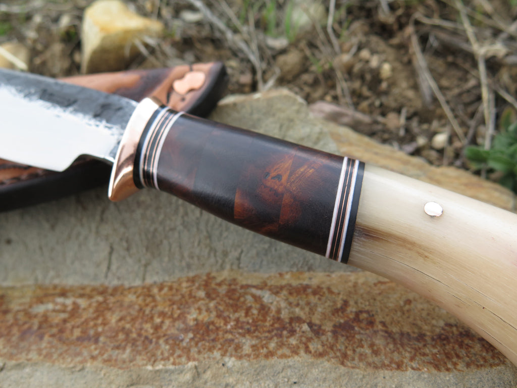 Musk Ox & Desert Ironwood Drop Point