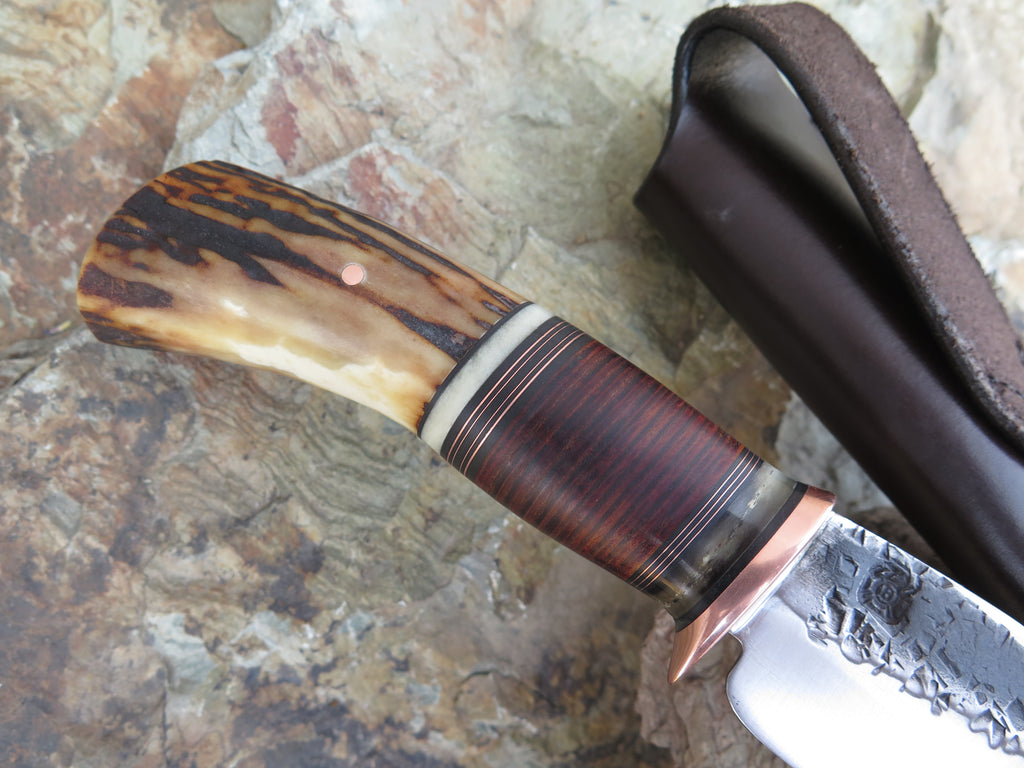 Premium Sambar Stag, Dall Sheep and Horsehide Hunter