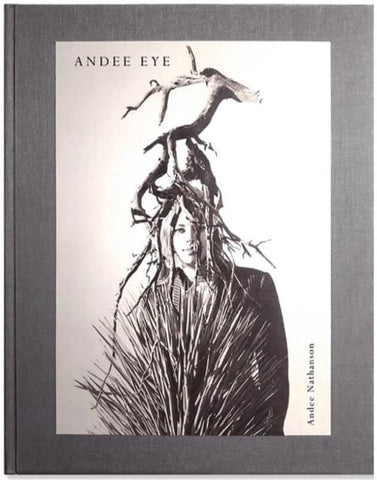 Andee Eye book cover