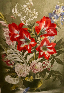 Striped Lily Lithograph