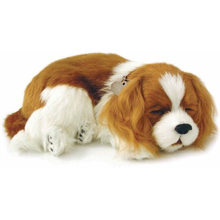 Perfect Petzzz Dog | King Charles Cavalier