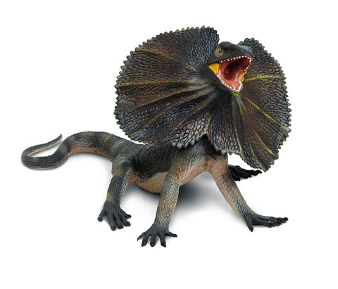 Incredible Creatures | Frilled Lizard