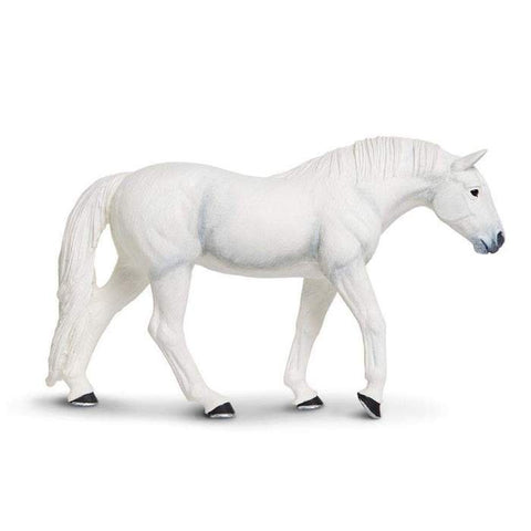 Farm | Lipizzaner Stallion
