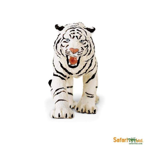 Wildlife | White Bengal Tiger