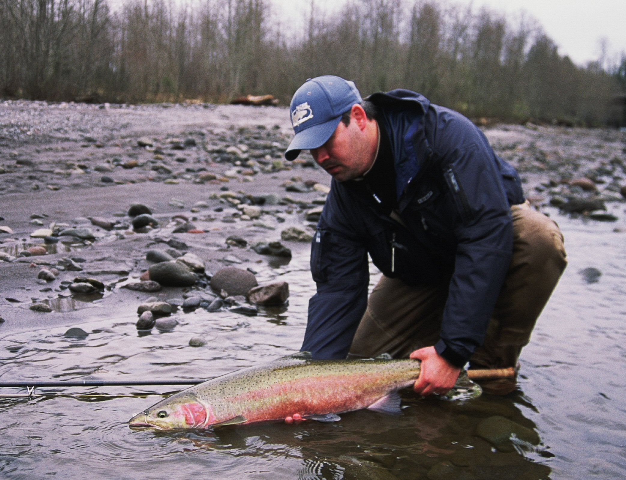 Southwest Washington Winter Steelhead