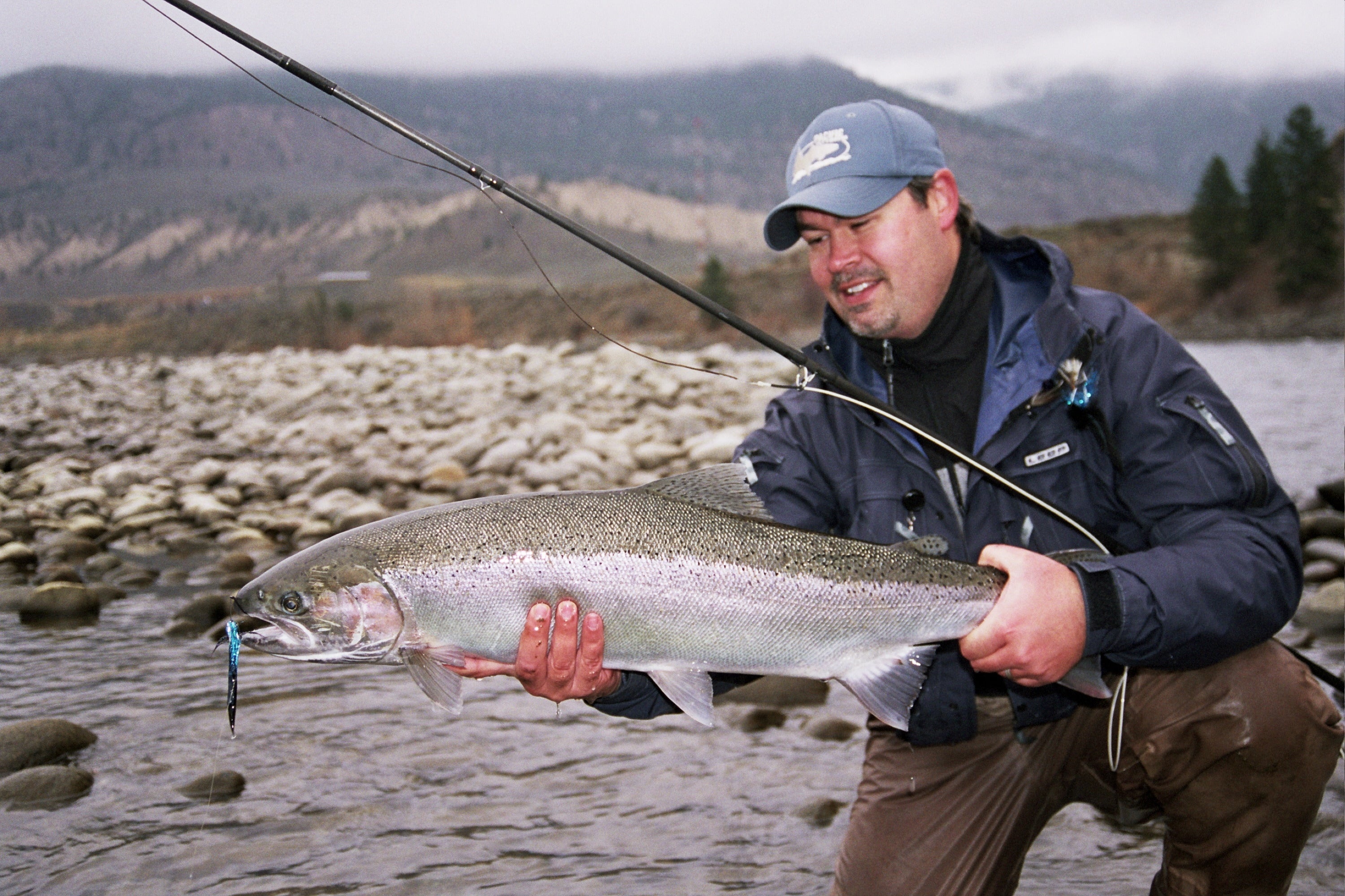 Thompson River Steelhead