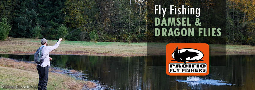 Fly fishing flies, damselflies, damsel dragonflies, dragon