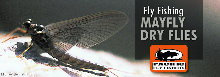 Fly fishing flies, mayfly dry