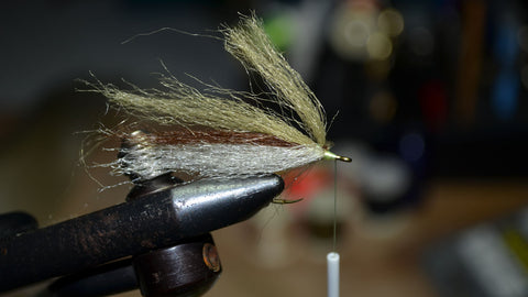 Tying Pacific Fly Fishers' Pass Lake Minnow