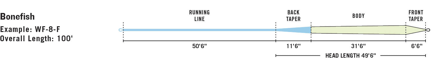 RIO Bonefish line taper diagram