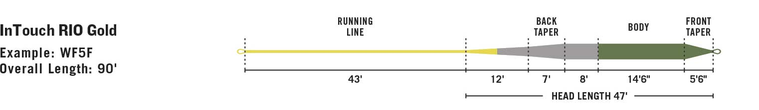 RIO InTouch Gold line taper diagram