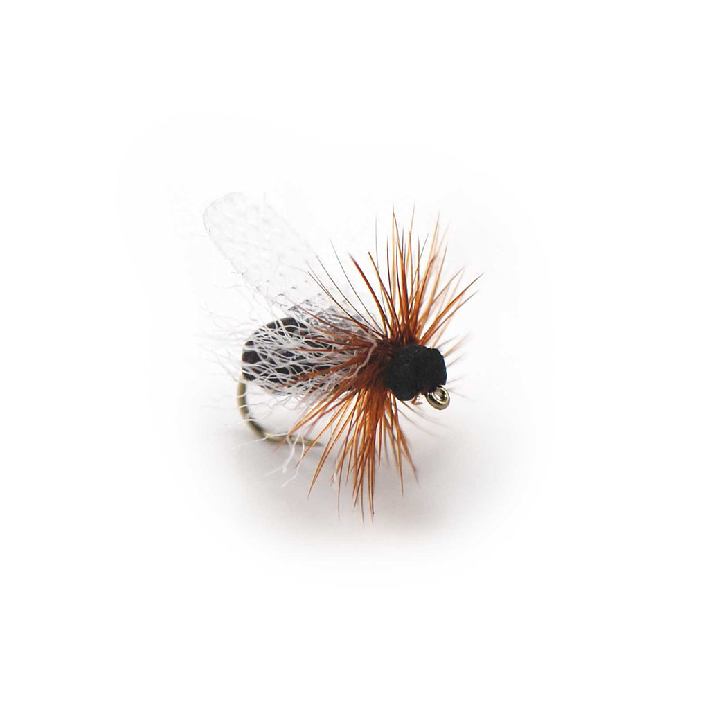 Foam Flying Ant - Pacific Fly Fishers
