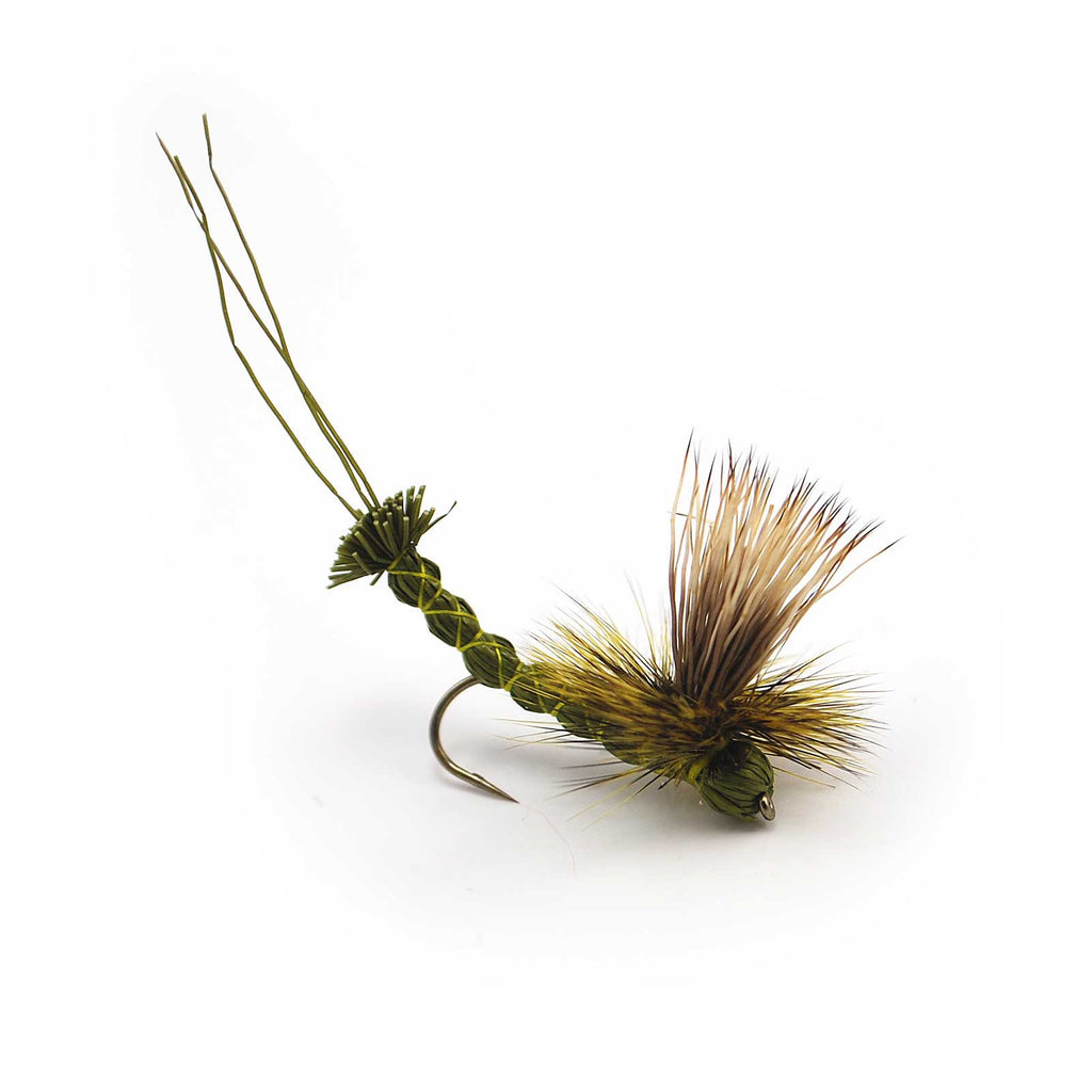 Green Paradrake - Pacific Fly Fishers