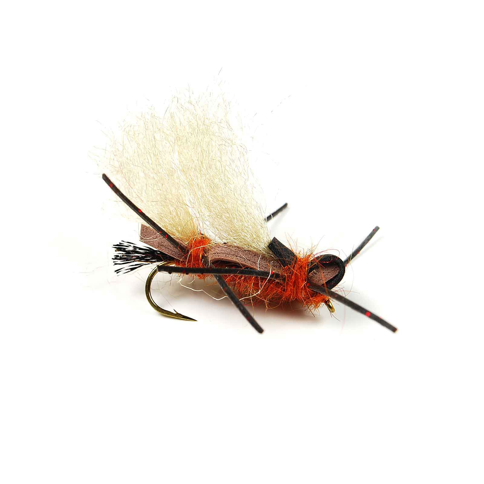 Image result for Looking with a Dry Fly