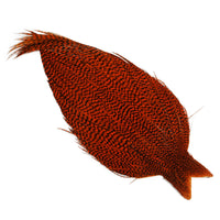 Whiting High & Dry Hackle Cape - Grizzly Orange
