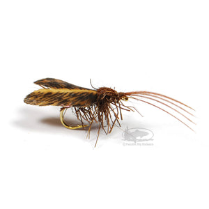 Angelo's Deer Caddis - Mottled Brown