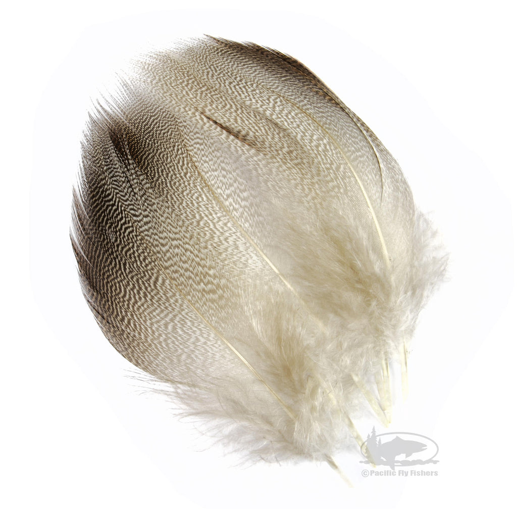 Bronze Mallard Feathers - Select Jumbo Pairs - Spey Wings - Fly Tying Materials