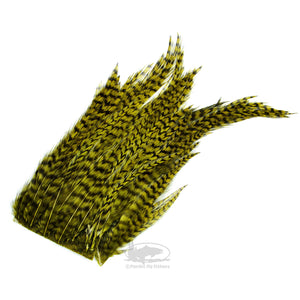 Hareline Bugger Hackle Patches - Grizzly Olive - Hackle for Wooly Bugger Fly Tying