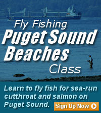 Fly Fishing Puget Sound Beach Classes