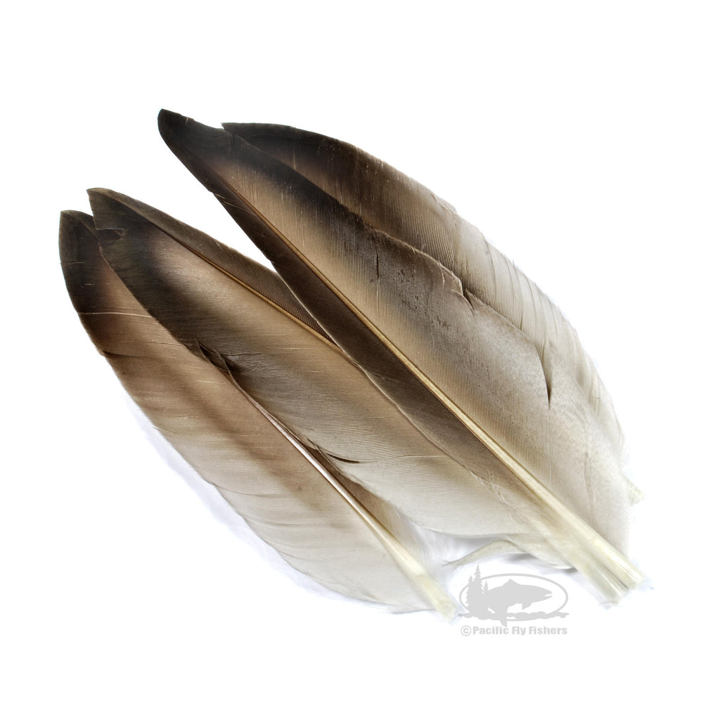 Duck Quill Wing Feathers - Natural Mallard Gray