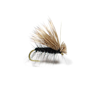 Elk Hair Caddis - Black - Pacific Fly Fishers
