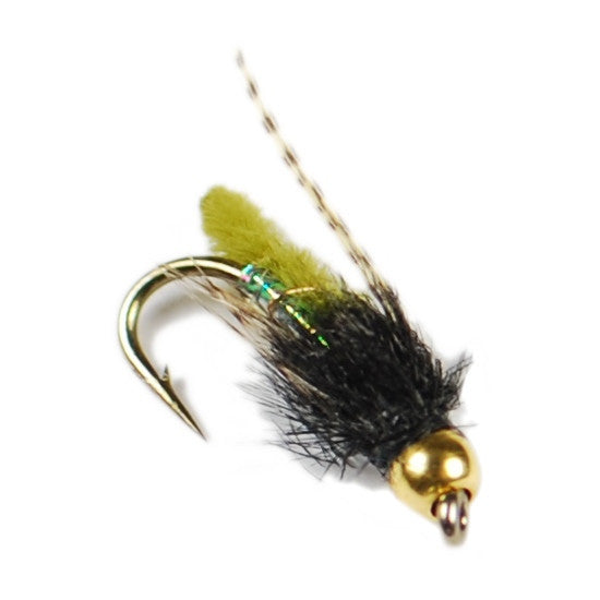 Fox's Caddis Poopah Beadhead - Pacific Fly Fishers