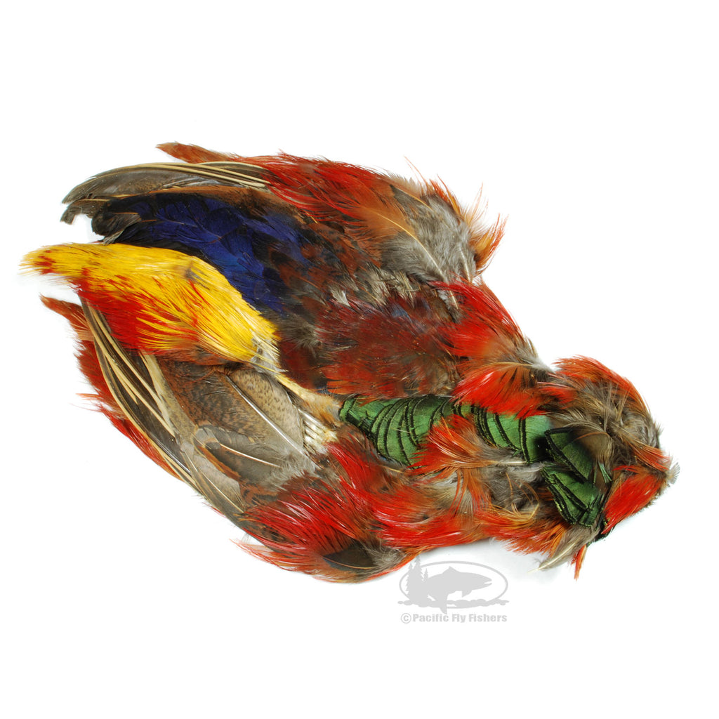 Golden Pheasant Skin Less Head and Tail - Fly Tying Materials