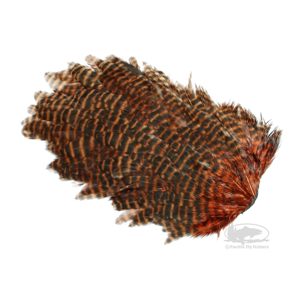 Grizzly Hen Patch - Brown - Fly Tying Hen Saddles