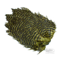 Grizzly Hen Patch - Olive - Fly Tying Hen Saddles