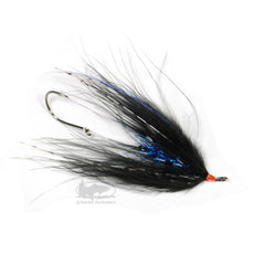 Hoh Bo Spey - Black and Blue - Steelhead Fly