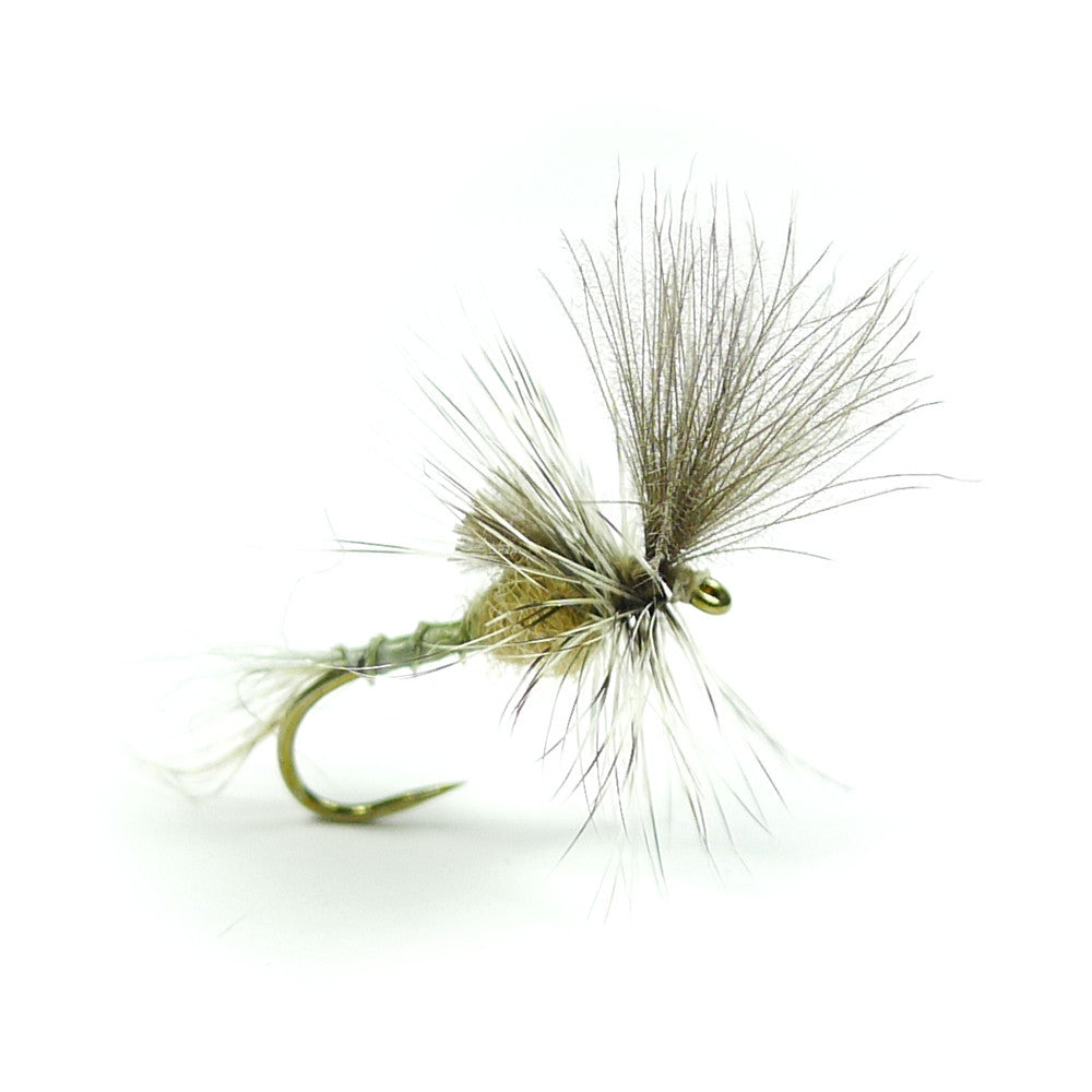 Last Chance Cripple - Callibaetis - Pacific Fly Fishers
