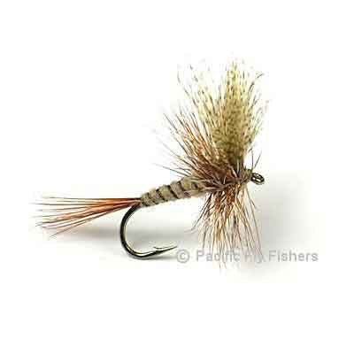 March Brown - Pacific Fly Fishers