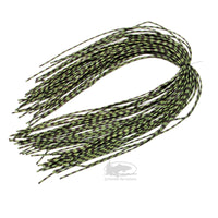 MFC Centipede Legs - Medium - Speckled Olive