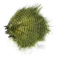 MFC Mini Barred Marabou - Olive