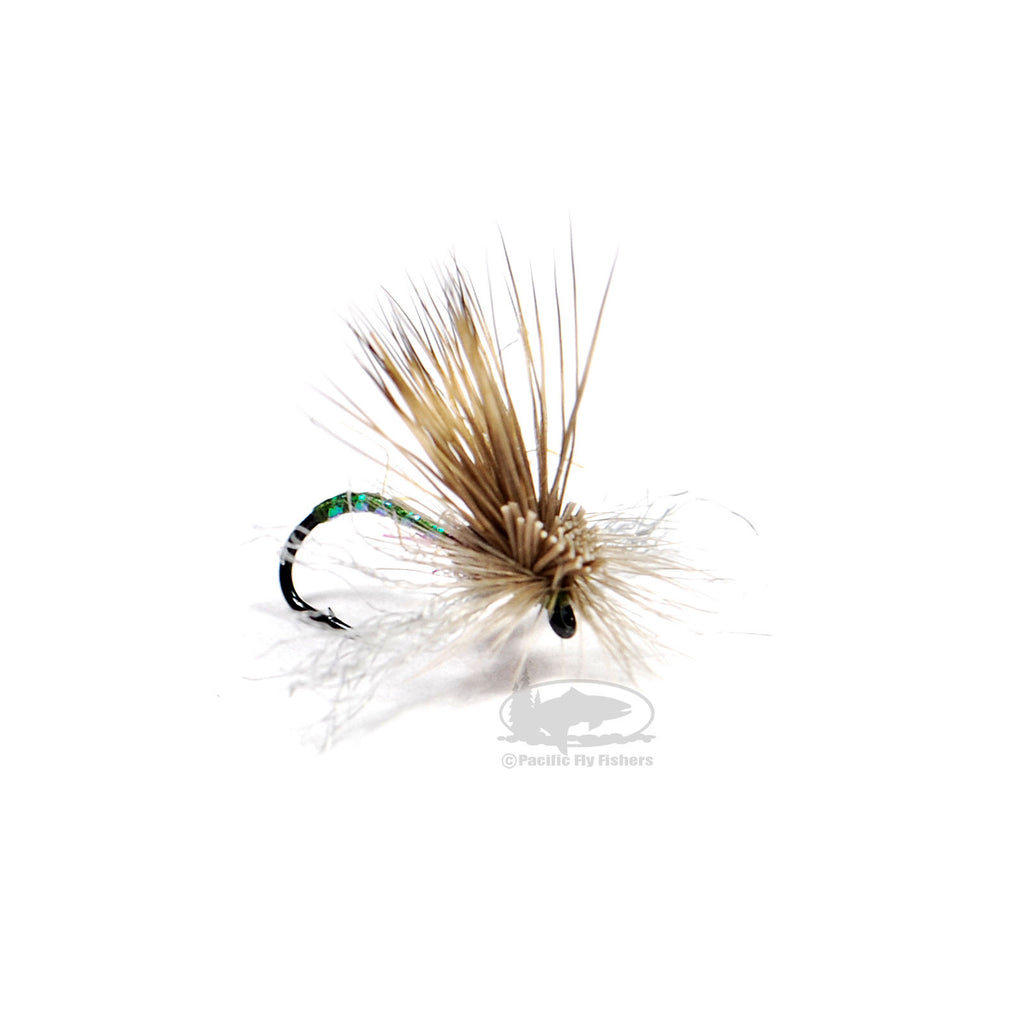 Umpqua Amy/'s Ant Olive 2 Pack Dry Fly Fishing Flies