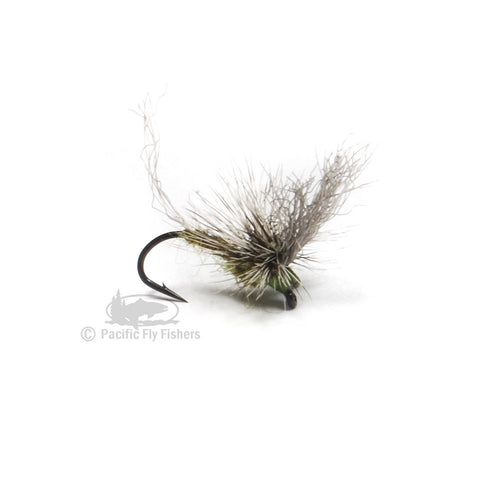 Morrish May Day - BWO