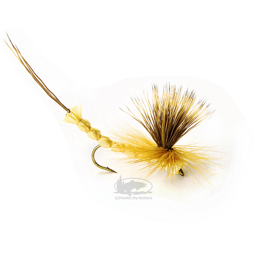 Paradrake Hex - Hexagenia Dry - Mayfly - Fly Fishing Flies