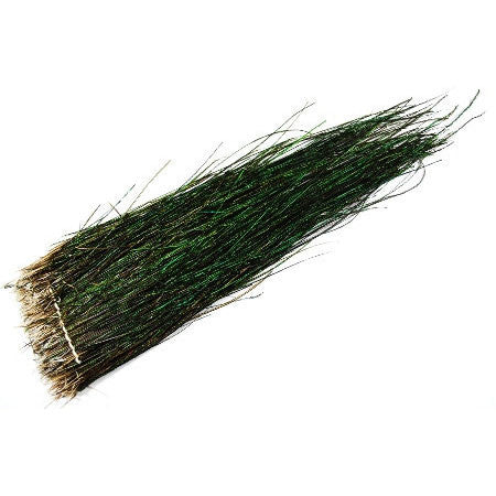 "Peacock Herl - 10""-12"" - Pacific Fly Fishers"